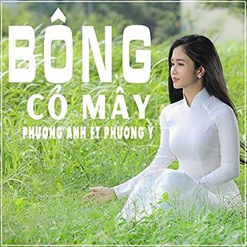 Bong Co May