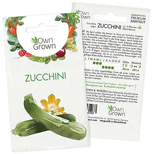 Premium Zucchinisamen (Cucurbita pepo), Zucchini Samen zum Pflanzen in Garten und auf Balkon, Saatgut für rund 5 Zucchini Pflanzen - dunkelgrüne Sorte Black Beauty - von OwnGrown