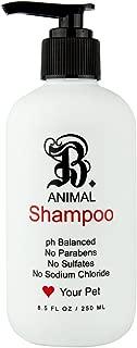 B THE PRODUCT Sulfate Free, Natural Pet Shampoo, Paraben Free Itchy & Sensitive Skin, Witch Hazel & Wild Chamomile-PH Balanced Pets-8.5oz.