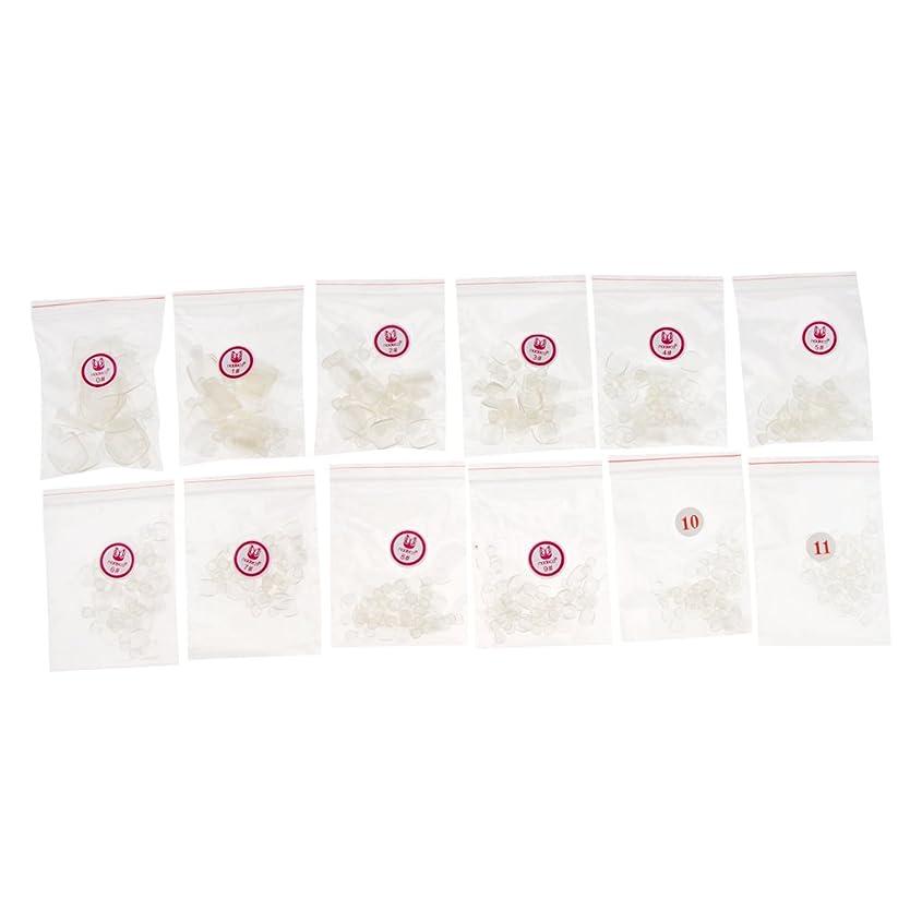 スペード囲む促すPerfeclan 約504個 人工爪 ヒント ファッション フランスネイル ネイル用ツール 3色選べる - クリア