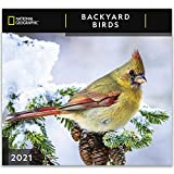 National Geographic Backyard Birds 2021 Wall Calendar