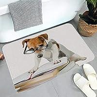 バスマット 玄関マット スマートジャックラッセルテリア 50×80cm 足拭きマット 滑り止め付き 速乾 洗える シンプル かわいい