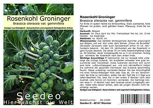Seedeo® Rosenkohl Groninger (Brassica oleracea var. gemmifera) 50 Samen BIO