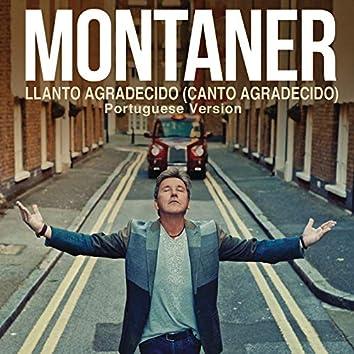 Llanto Agradecido (Canto Agradecido (Portuguese Version))