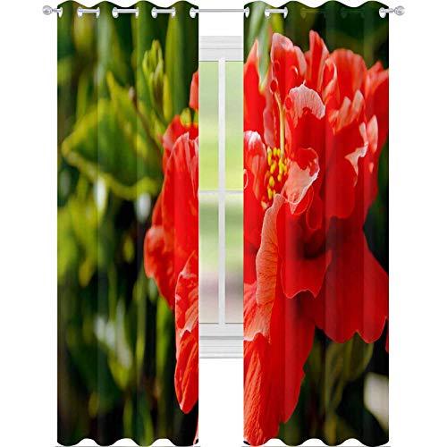 YUAZHOQI - Cortinas opacas para dormitorio (132 x 160 cm), color rojo