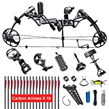 XGeek Compound Bow,Limbs Made in USA,19-30 Draw Length,19-70Lbs Draw Weight,Up to 320FPS, Ship from USA Warehouse(Arrives 3-5 Days