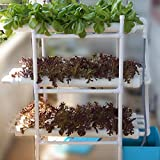 HYDDNice Hydroponic Grow Kit 12 Pipes 3 Layers 108 Plant Sites Hydroponic Growing System Garden Vegetable Planting Tool