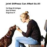 Gelenk Ergänzungsfutter für Hunde   Gegen Arthritisschmerzen, Hüftprobleme, Rheuma, Arthrose & Bewegungsprobleme   Gelenkschutz für Ihren Hund  120 Extra Starke & Kaubare Gelenketabletten - 7