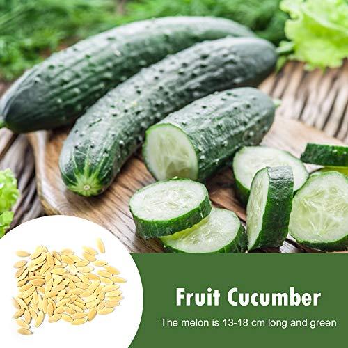 Yanten 160 stks fruit komkommer zaden huis tuin planten zaaien groenten planten