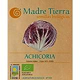 Madre Tierra - Semillas Ecologicas de Achicoria -( Cichorium Intybus) Origen Irún- España - Semillas Especiales - 1.5 gramos