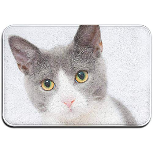 DaiMex Animal Cute Pet Cat Outdoor mat huisdeurmatten ingangstapijt standaard tapijt