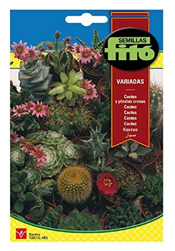 Semillas Fitó Cactus y Plantas Crasas Variadas