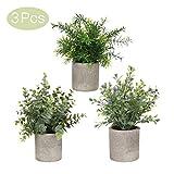 AXABING Künstlicher Pflanzen, künstliche Mini-Eukalyptuspflanzen 3 Stück, künstliche Pflanzen zum Dekorieren von Schreibtischen,Schlafzimmer, Küchen, Schreibtische, Gartendekorationen, Zimmern