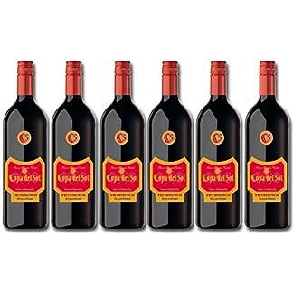 Copa-del-Sol-Vino-Tinto-Fruchtig-Suess-Rotwein