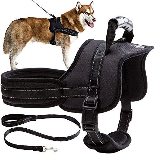 Mihachi Dog Harness