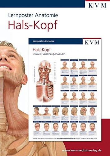 Lernposter Anatomie: Region Hals - Kopf (Die Muskelbuch-Reihe)