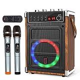 JYX Máquina de karaoke con dos micrófonos inalámbricos, ajuste de bajos/agudos y luz LED, soporte TWS, entrada auxiliar, radio FM, REC, suministro para fiesta/reunión/boda - grano de madera
