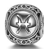 NINAQUEEN Charm para Pandora Charms Piscis 12 Constelación Signo Zodiaco Regalo Mujer Originales Plata 925 Cumpleaños para Esposa Novia Mamá