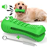 Ronton Dog chew Toy, Durable Dog Chew Toys for Aggressive Chewers Large Breed, Alligator Dog Teeth Cleaning chew Toys for Medium Large Dogs, Dental Care Squeaky Dog Toy