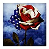 nikunLONG-Free American Independence Day Embroidery Home Decor Gift Celebrate Freedom Fourth of July Patriotic