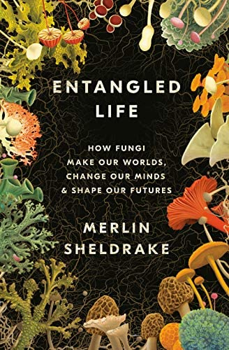Entangled Life How Fungi Make Our Worlds Change Our Minds Shape Our Futures product image