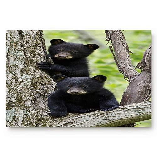 SUPERQIAO Lindo pequeño Oso Negro árbol Alfombrillas