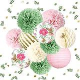 NICROLANDEE Decoraciones para baby shower de jardín de mariposas, 12 pompones de tela verde rosa con diseño de pompones de papel 3D confeti dorado 50 g para fiestas de hadas, bodas, cumpleaños