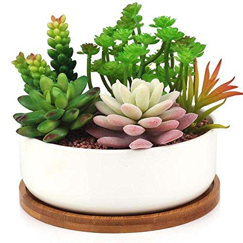 Innoter Vaso in ceramica bianca con vassoio in bambù, ideale per fiori e cactus