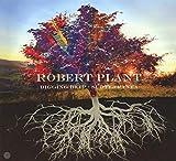 Robert Plant - Digging Deep: Subterranea (2 Cd)