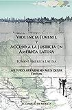Violencia juvenil y acceso a la justicia. Tomo I. América Latina