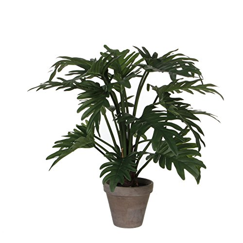 MICA Decorations 930651 Philodendron, Polyester, Vert, 66 x 66 x 50 cm