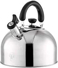 MSWL Kettle, 304 Stainless Steel Kettle, Sound Kettle, Gas Cooker Universal, 3L/4L/5L/6L Kettle (Capacity : 4L)
