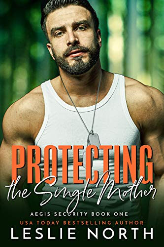 Protecting the Single Mother (Aegis Security Book 1) by [Leslie North]