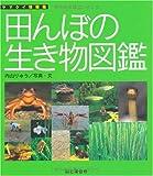 田んぼの生き物図鑑 (ヤマケイ情報箱)
