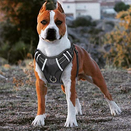 BABYLTRL Big Dog Harness No Pull Adjustable Pet Reflective Oxford Soft Vest for Large Dogs Easy Control Harness (M, Black)