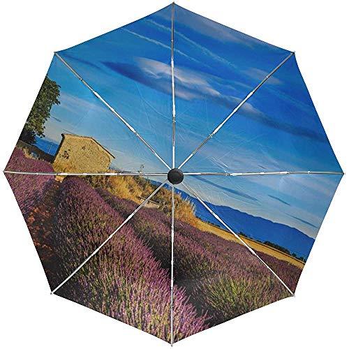 Automatikschirm Frankreich Provence Feld Gras Himmel Reisen bequem Winddicht Wasserdicht Schnelltrocknend Faltbar Auto Öffnen Schließen