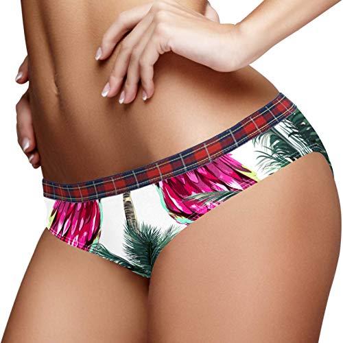 Women's Underwear Soft Hipster Stretch Bikini Panties Briefs L Tropical Parrots Birds Plam Tree Exotic