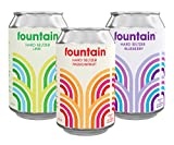 FOUNTAIN Hard Seltzer, CLASSIC MIXED CASE 12 x LARGE