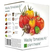 Le coffret contient tout ce dont vous avez besoin pour faire pousser plusieurs variétés de tomates insolites. Zlatava, Duo, Taiko, Radana, Black Russian and Green Envy F1 graines de tomates 6 variétés de graines de tomates, 6 pots en tourbe, 6 blocs ...