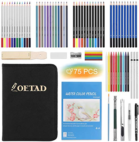 Sketching Drawing Pencils Set 75 Pieces Professional Art Kit with...