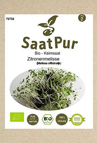 SaatPur Bio Keimsprossen - Zitronenmelisse - Keimsaat für die Sprossenzucht zuhause - 5g Zitronen - Kresse