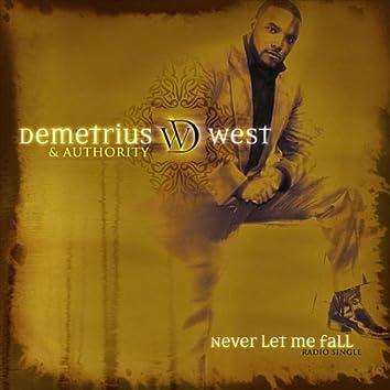 Never Let Me Fall (Radio Single)