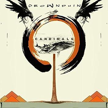 Candimals