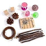 Esenlong 11 juguetes para masticar hámster, conos de madera de pino molar, madera de manzana, columpio, bola de sisal molar, anillo pequeño para chinchillas gerbils
