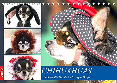 Chihuahuas. Zuckersüße Hunde im lustigen Outfit (Tischkalender 2022 DIN A5 quer)