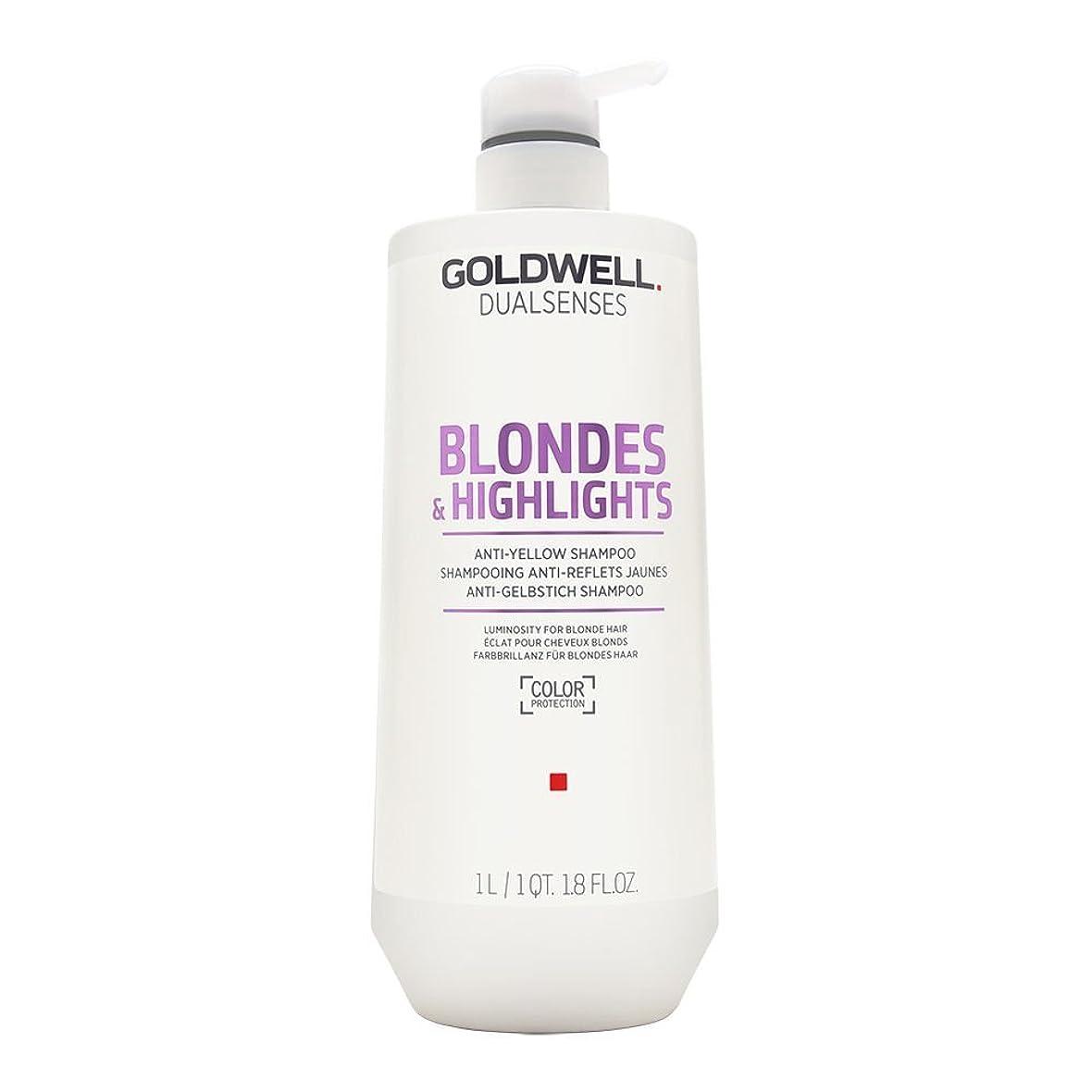 前任者ブリーフケース印刷するゴールドウェル Dual Senses Blondes & Highlights Anti-Yellow Shampoo (Luminosity For Blonde Hair) 1000ml