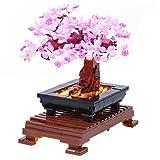 vengo set di luci a led decorative per albero bonsai, compatibile con lego 10281 creator (solo led incluso, non kit lego)