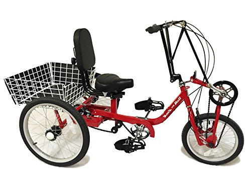 Buy Discount Junior Special Needs Hand and Foot Powered Cycle