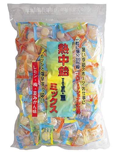 熱中飴 1・2・3 ミックス 業務用 塩飴1kg ■井関食品