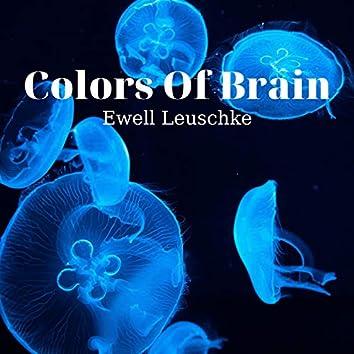 Colors Of Brain
